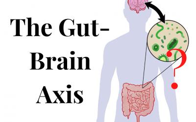 Understanding Your Gut-Brain Axis